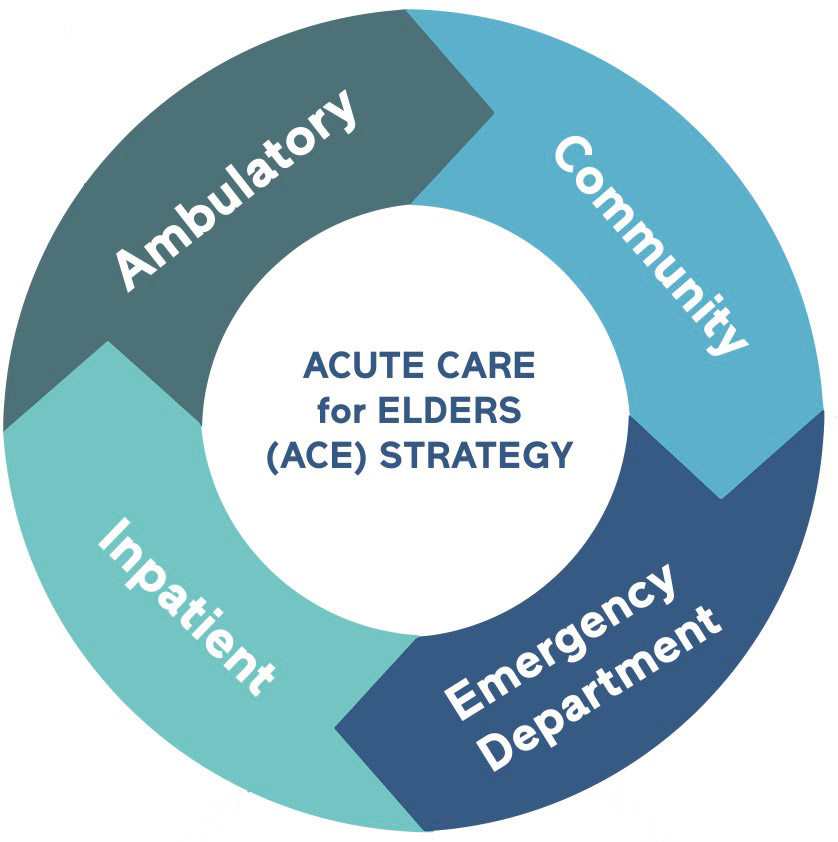 ACE Wheel: Ambulatory, Community, Emergency Department, Inpatient